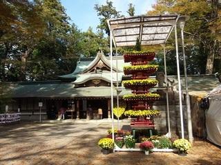003 17.11.02 010 一言主神社、五重塔.jpg