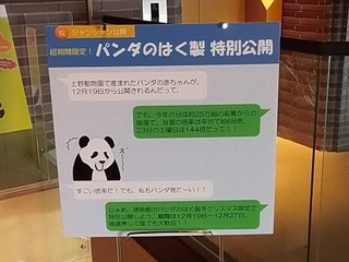 006 17.12.21 013 パンダの剥製.jpg