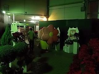 008 17.12.24 022 とちぎ花センター.jpg