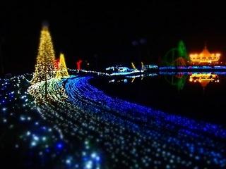 14.12.24^25 クリスマス 023 鯉牧場.jpg
