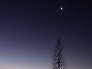 19.01.01 006 夜明け前の惑星たち。.jpg