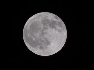 P4150334 満月.jpg