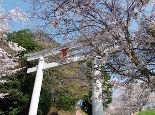 001 18.03.29 007 一言主神社大鳥居.jpg