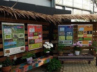 002 17.10.09 002 東南アジアの植物展.jpg