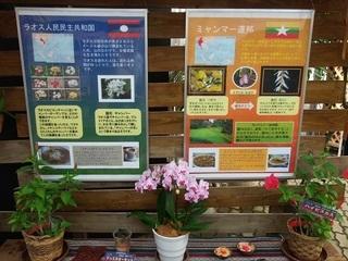 003 17.10.09 005 東南アジアの植物展.jpg