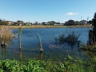 004 17.10.30 003 台風22号による、お花が池 の増水。.jpg
