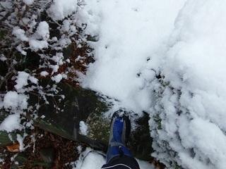005 18.01.22 008 雪山ハイキング.jpg