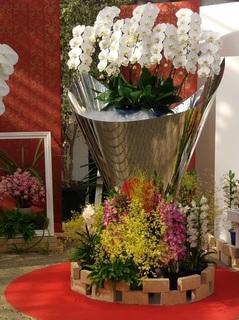 010 18.03.15 026 華麗なる花の貴婦人たち.jpg