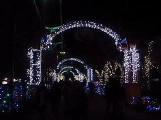 011 16.12.24 東武動物公園イルミネーション 033 光のトンネル.jpg