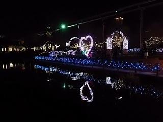 013 16.12.24 東武動物公園イルミネーション 038 鯉牧場ハート.jpg