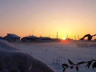 013 18.01.23 005 雪原の日の出.jpg