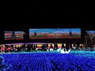 016 16.12.24 東武動物公園イルミネーション 050 光のスクリーン.jpg