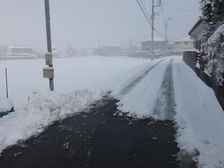 018 18.01.23 018 雪かき.jpg