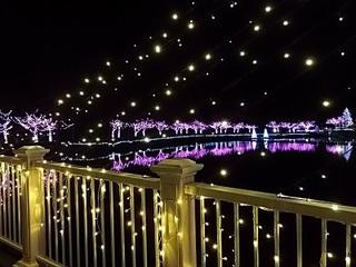 022 16.12.24 東武動物公園イルミネーション 065 白鳥の池にかかる橋.jpg