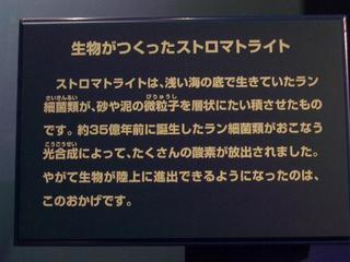 13.02.07 006 圧縮.JPG