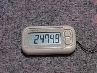 17.01.13 012 歩数.jpg