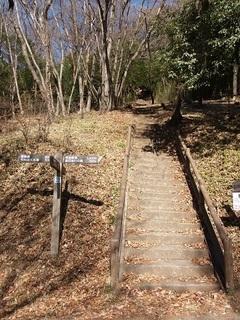 18.02.08 004 三毳神社奥社への参道.jpg
