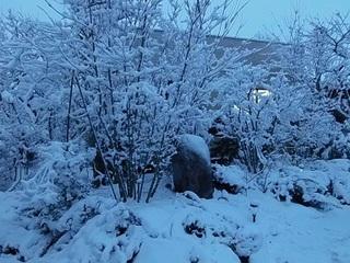 雪のバレンタイン2.jpg
