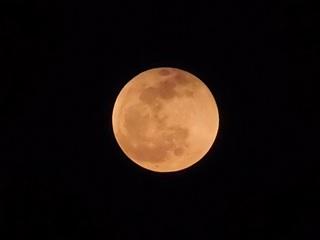 P4150326 満月.jpg