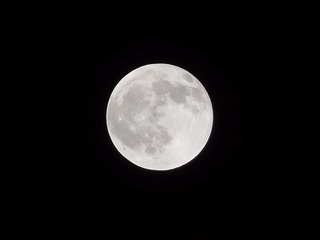 P4150332 満月.jpg